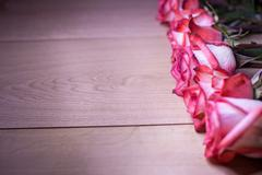 Pink roses on a wooden background Stock Photos