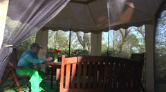 Florist man dap tulip flowers on arbor table in spring. 4K Stock Footage