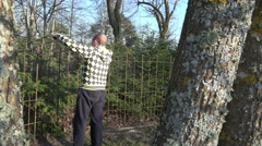 Gardener man trim fir tree hedge with clippers. 4K Stock Footage