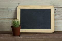 Catcus and blackboard against a wood background - stock photo