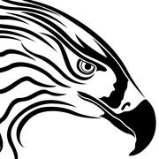 Head of Eagle with Massive Beak Stock Illustration