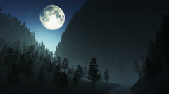 4K Deep Forest Wilderness in Mountains at Night under Fullmoon 2 stylized Stock Footage
