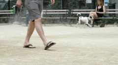 Dog Owner Walking Low Angle Feet Legs Washington Square Park slow motion 4K NYC Stock Footage