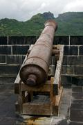 Stock Photo of cannon in fort adelaide