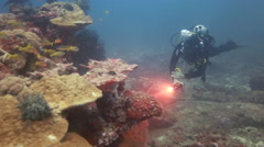 Scuba diver with light examining coral reef Stock Footage