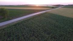 Aerial view of corn field road and lake Stock Footage