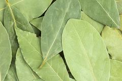 Aromatic bay leaves background - stock photo