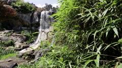 Richmond Virginia Maymont Park Waterfall Stock Footage