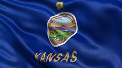 US state flag of Kansas - stock illustration