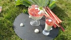 Rhubarb pannacotta Stock Footage