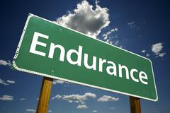 Endurance Road Sign - stock photo