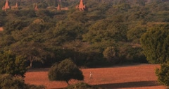 Aerial panoramic view of Bagan historical site in rural Myanmar (Burma) Stock Footage
