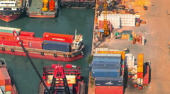 Busy activity of loading and unloading containers from ships in Hongkong Stock Footage