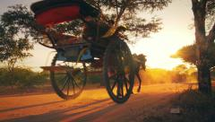 Vintage transport - horse chariot on dust road of Myanmar's countryside  Stock Footage
