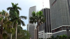 One Biscayne Tower, Southeast Financial Center &  50 Biscayne in Miami Downtown. Stock Footage