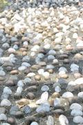 Pebble Stone On Pavement For Foot Reflexology Pathway Stock Photos