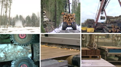 Timber and lumber industry. Parquet board production. Collage. Stock Footage