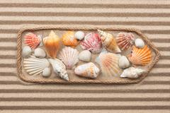 Pointer made of rope with sea shells Stock Photos