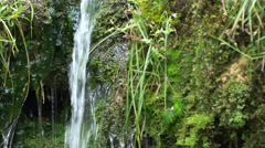 Small stream flowing over mossy waterfall Stock Footage