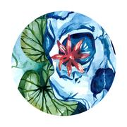 Vector aquarelle skull with lotus in the river Stock Illustration
