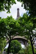 The Eiffel Tower Hidden by Trees - stock photo