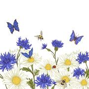 Greeting Card with Blooming Chamomile - stock illustration