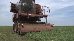 Green peas harvester Stock Footage