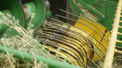 Harvesting and baling alfalfa or Lucerne with tractor Stock Footage