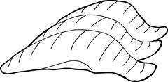 Stock Illustration of Outline Cartoon of Raw Shrimp