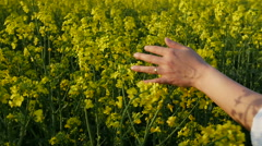 Detail of heand in Wheat Field Waves Moved by Summer Wind - dolly shot Stock Footage