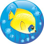 Discus fish on a blue background Stock Illustration