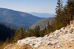 Mountain landscape with rocks and trees in Zakopane Stock Photos