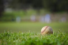 Used baseball on fresh green grass - stock photo