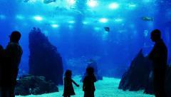 Kids at the Oceanarium Stock Footage