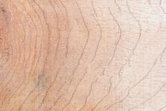 Wood texture background. - stock photo