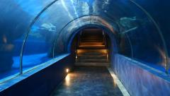 Walk through and out of underwater glass tunnel, oceanarium attraction Stock Footage