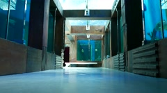 Modern themed aquaria passage, surrounded by glass walls, fish floats Stock Footage