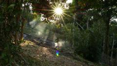 Smoke rise up from fire remains in tropical forest, magical lighting, slide shot Stock Footage