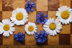 Abstract flowers chessboard - stock photo