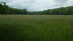 Field in country, open space of Connecticut with gorgeous landscape Stock Footage