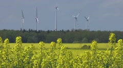 Producing energy with canola and wind Stock Footage