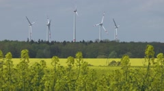 Canola field with a wind-farm at the background, Producing energy - stock footage