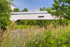 Moscow Covered Bridge in Summer - stock photo
