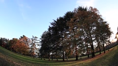 Panning fish-eye view of city park in Autumn Stock Footage