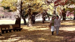 Japanese mature couple walking in a city park in Autumn Stock Footage