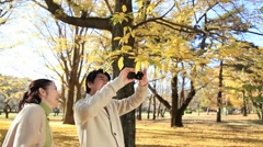 Japanese mature couple taking pictures in a city park in Autumn Stock Footage