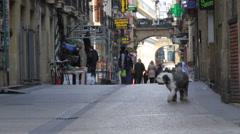 Restaurants and Bars in San Sebastian, Spain Stock Footage