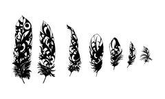 black feathers - stock illustration