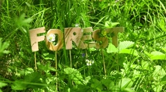 Forest Word in the meadow - stock footage