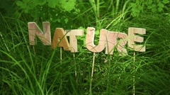 Nature Word in the grass - stock footage